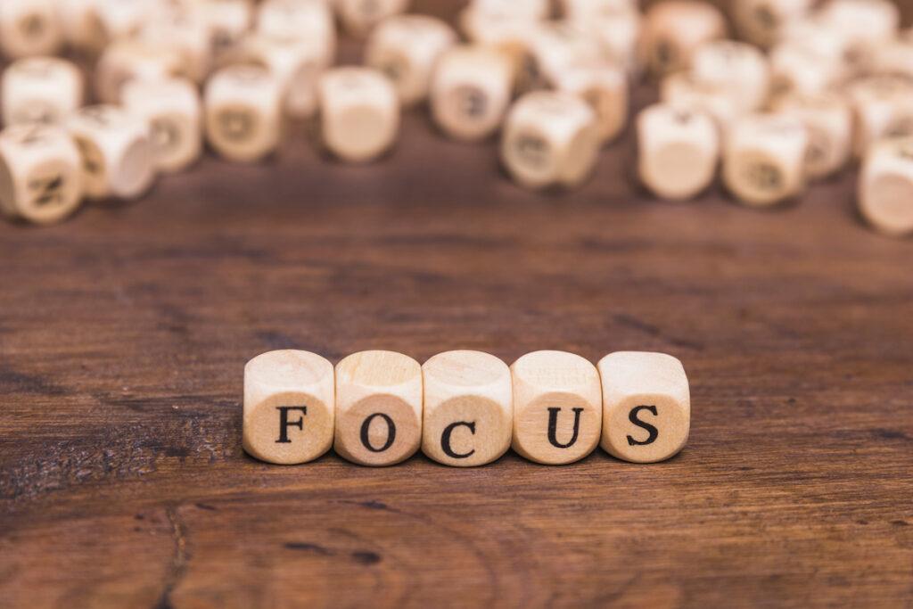 focus på Behavioral Targeting